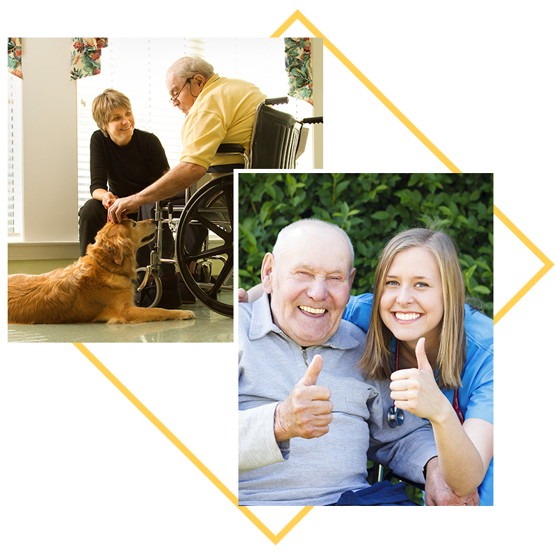 Collage of images; residents petting dog, residents giving a thumbs up
